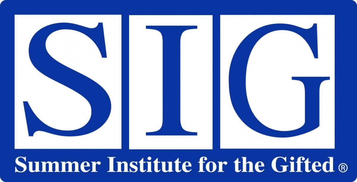 2018 SIG天才学生暑期项目
