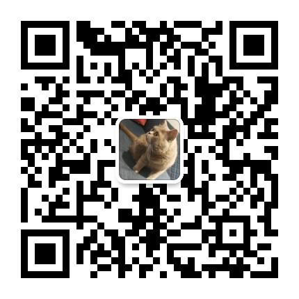 国际竞赛/国际课程合作林老师