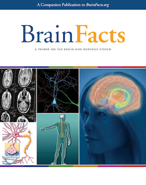 Brain Facts book Brain Bee参考书
