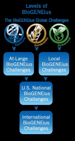 BioGENEius竞赛流程