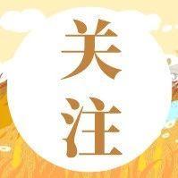 上海教育系统这16个集体、45名个人拟获全国性表彰!