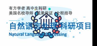 有方高中生自然语言研究