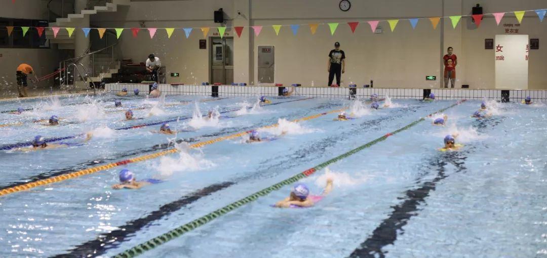 Go, Stallions Swim Team!