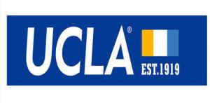 UCLA CSST Summer Research Program