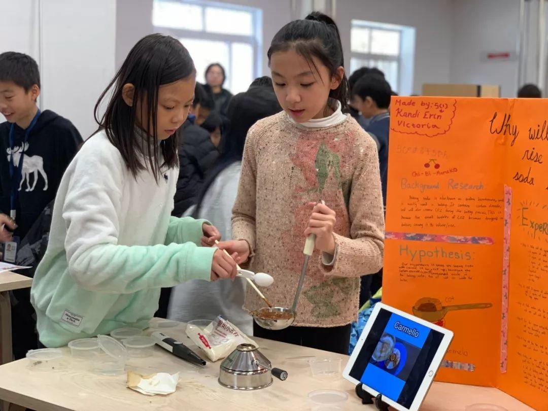 G4-5   Science Fair