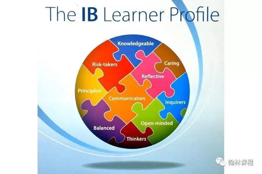 IB选课丨看完这篇攻略,你不拿高分算我输!
