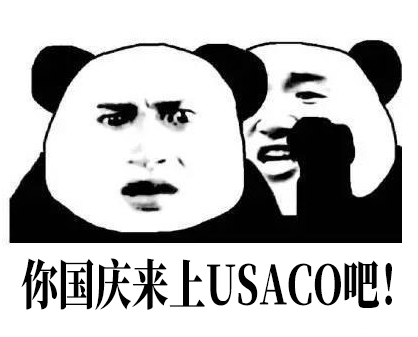 计算机必备 | 砸开名校的大门,国庆USACO集训营开营了,快来成就你的名校梦!