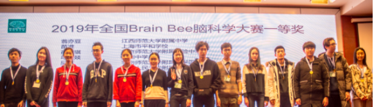 欢迎报名参加2021年Brain Bee脑科学大赛