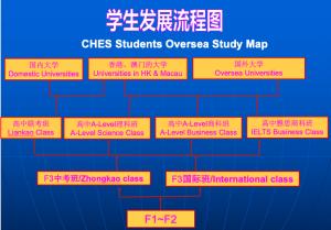 学生升学路径