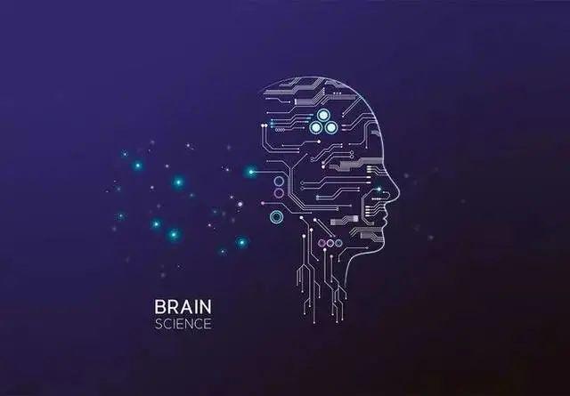 您有一封Brain Bee脑科学大赛全国赛邀请函待查收!