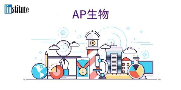 AP党专场!全年够用的【最全AP福利合集】一次性领取到位!