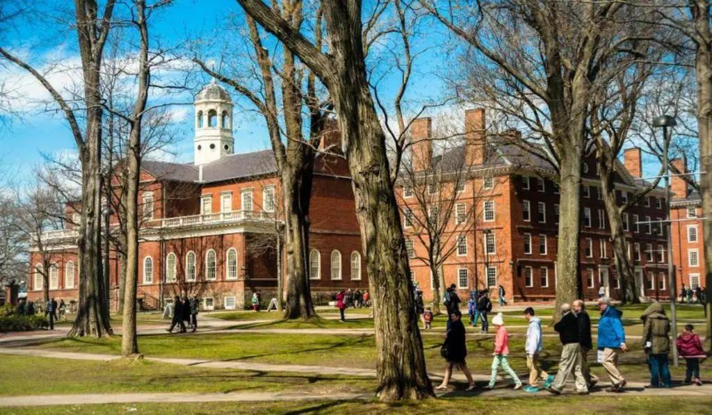 """""""鸡娃""""已经OUT?哈佛大学教授揭秘:排名前5%的学霸爬藤成功全靠TA!"""