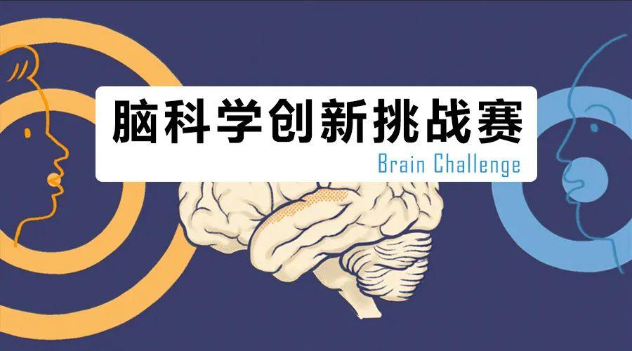 2021年脑科学创新挑战赛(Brain Challenge)启动,欢迎参加!
