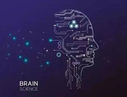 BrainBee脑科学大赛助力学学员获得名校录取!含竞赛辅导!
