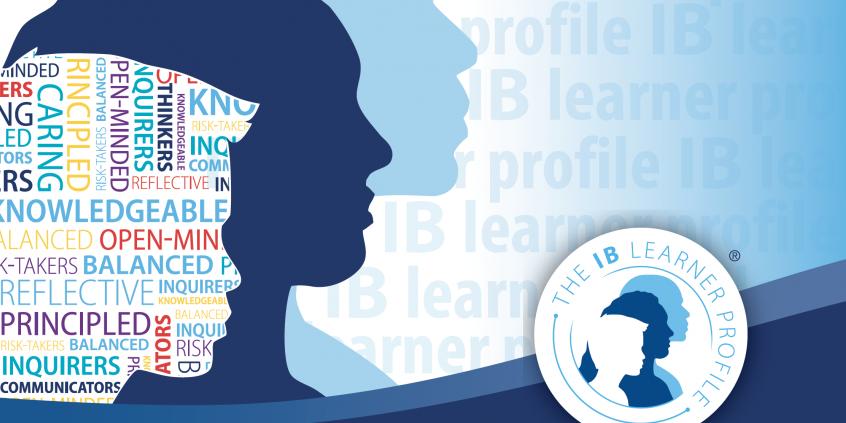 干货分享   IB课程介绍