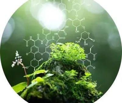 自然科学申请牛津剑桥的笔试和面试哪个更难?
